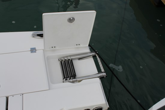 Robalo 246 Cayman SD ladder