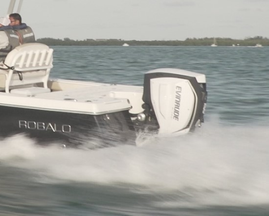 Robalo 246 Cayman max horsepower