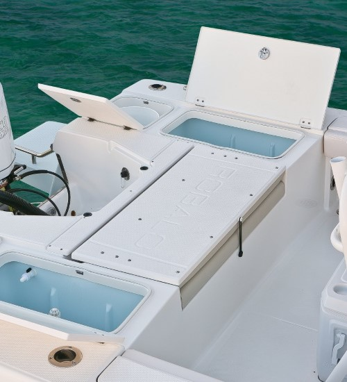 Robalo 246 Cayman stern casting