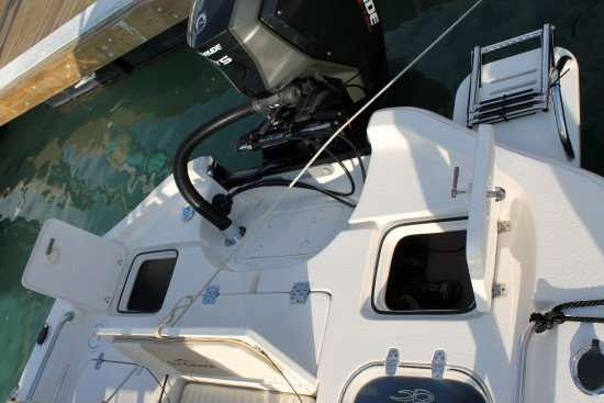 Sea Chaser 23 LX storage and rigging