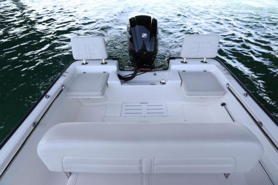 Boston Whaler 170 Montauk boarding steps