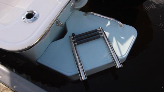 Boston Whaler 170 Montauk ladder