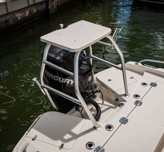 Boston Whaler 210 Dauntless tower
