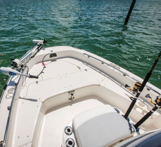 Boston Whaler 210 Dauntless fishing