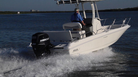 Boston Whaler 210 Dauntless outboard