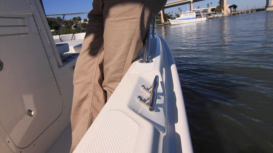 Boston Whaler 210 Dauntless stainless steel