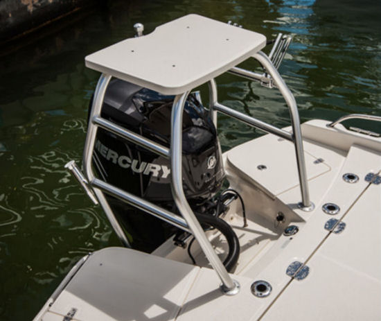 Boston Whaler 240 Dauntless All Activity Tower