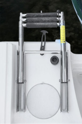 Boston Whaler 250 Outrage ladder