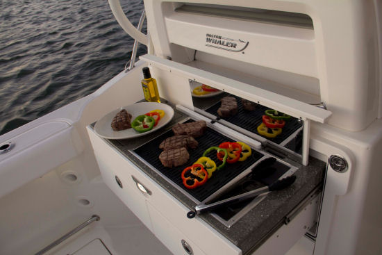 Boston Whaler 315 Conquest Pilothouse grill