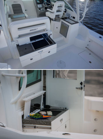 Boston Whaler 315 Conquest Pilothouse optional grill