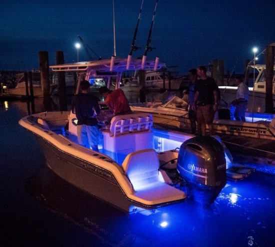 Grady-White Fisherman 216 led lights
