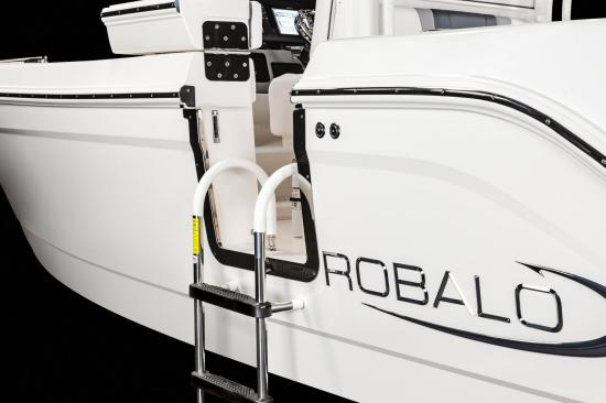Robalo R272 ladder