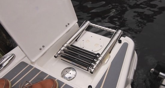 Robalo R317 ladder