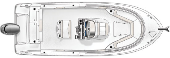 Robalo R242 layout