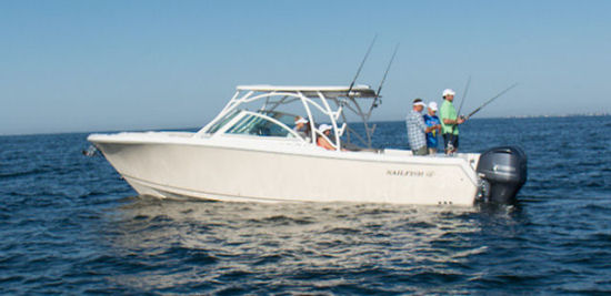 Sailfish 325 DC profile