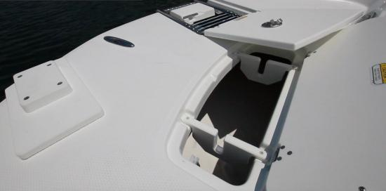 Tahoe 2150 CC bow boarding ladder
